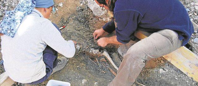 Nuevos restos óseos confirman en Morella la necrópolis de época andalusí