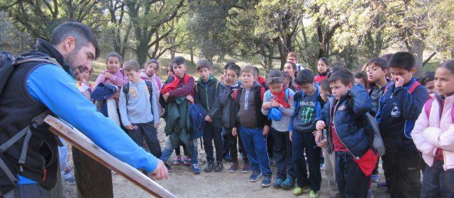 600 alumnes de Benicarló visiten el Barranc dels Horts