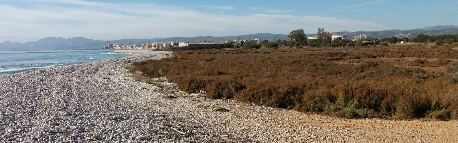 Ecologistas en Acción presenta alegaciones contra el PAI Doña Blanca Golf en Torreblanca