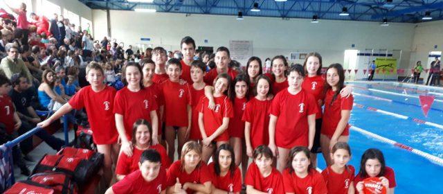 Set nadadors vinarossencs en el Campionat Autonòmic de llarga distancia en piscina