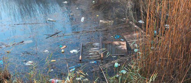 """Ecologistas en Acción reitera que """"nuestras zonas húmedas siguen estando mal gestionadas"""""""
