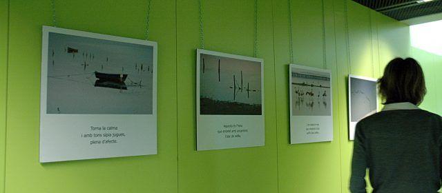 Poemes de disset síl·labes inspirats en el delta de l'Ebre s'exposen al campus Terres de l'Ebre