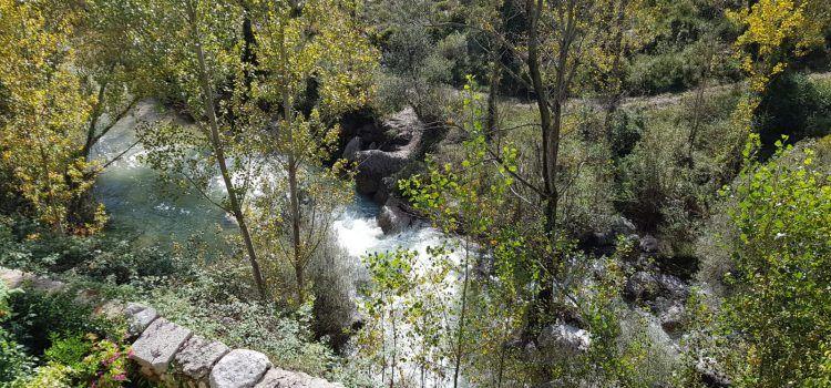 El Servol baixa net i ràpid per Vallibona