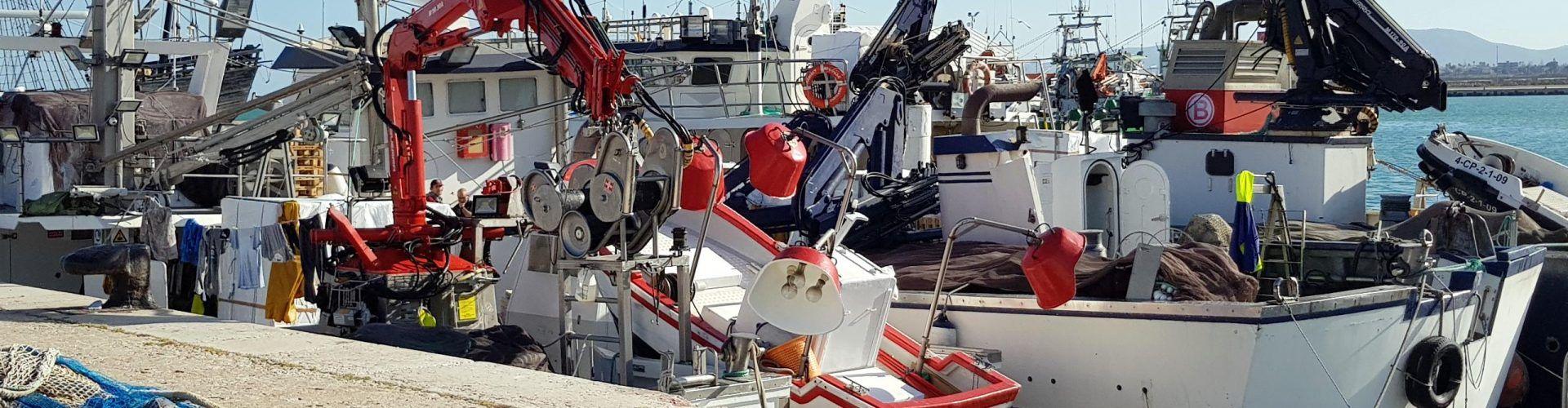 El puerto de Vinaròs se revitaliza con barcas de cerco forasteras