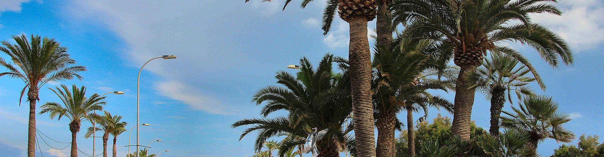 Ben Vist: Places i carrers de Vinaròs