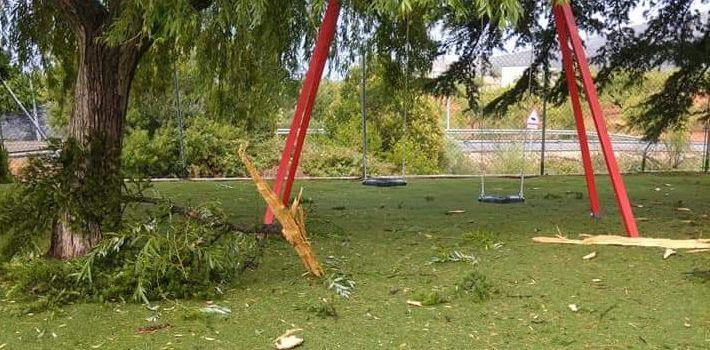 Un rayo cae en la piscina de Canet, repleta de público, dañando a un gran ciprés
