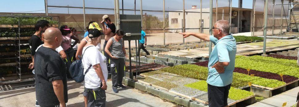 Arranquen els dos tallers d'ocupació de Benicarló per a persones amb dificultats d'inserció laboral