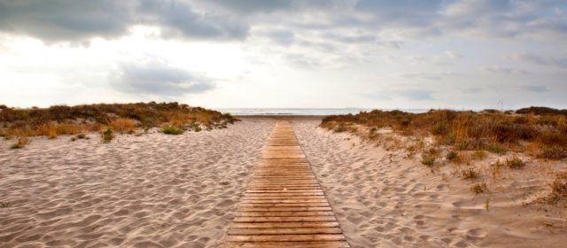La Generalitat declara microrreservas de flora en Benassal, Ares, les Coves i Morella