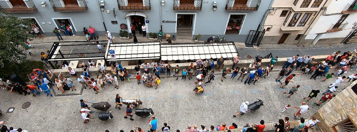 Morella viu el dia de la Penya El Bou dins de les Festes d'Agost