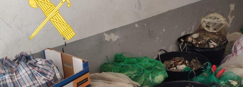 La Guardia Civil interviene más de 450 kilos de cangrejos azules