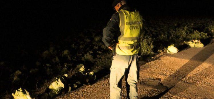 La Guardia Civil investiga a un vecino de Amposta por hurtar productos hortofrutícolas en l'Aldea