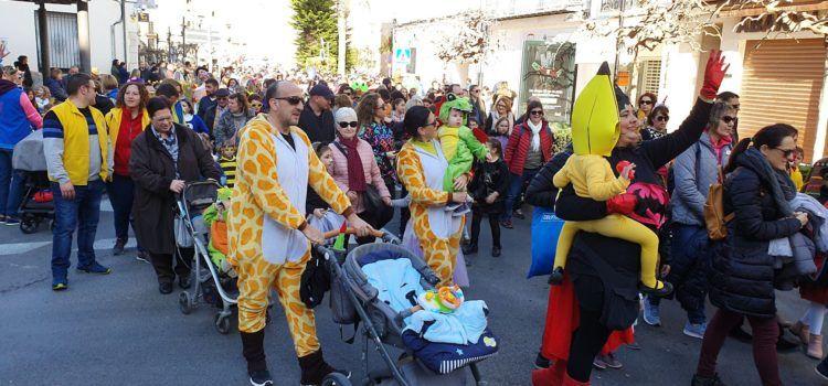 Galeria de fotos de la desfilada infantil del Carnaval de Vinaròs