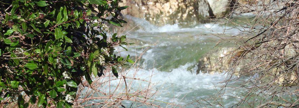 Els rius són vida també a Els Ports