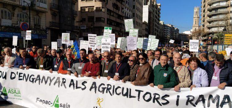 Agricultores de les Terres del Sénia en la protesta en Valencia del campo de la Comunitat Valenciana