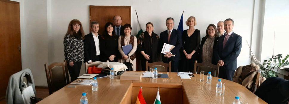 Ruth Sanz: «Les institucions espanyoles i valencianes hem d'ajudar a introduir als artistes de la província en els circuits culturals europeus»