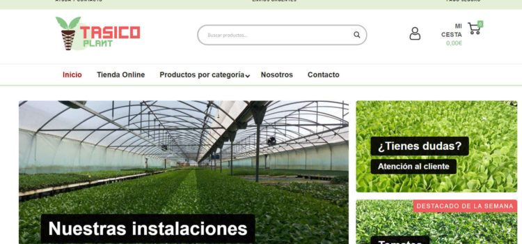 Tasico plant: exemple de com el coronavirus impulsa el comerç per internet