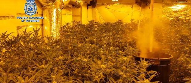 La Policía Nacional se incauta de 162 kilos de marihuana y detiene a 17 personas en Castellón, Ulldecona y otras localidades