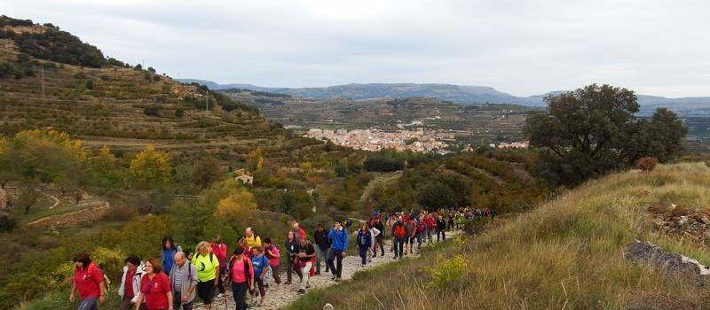Maestrat Viu recela del projecte Maestrazgo-Els Ports