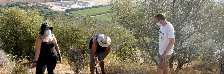 Les primeres excavacions al jaciment de l'Antic d'Amposta amplien dos segles més la seua cronologia