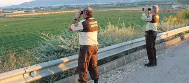 Guardes rurals a l'Aldea per evitar robatoris de collites