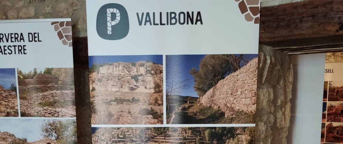 L'exposició sobre la pedra seca, a Vallibona