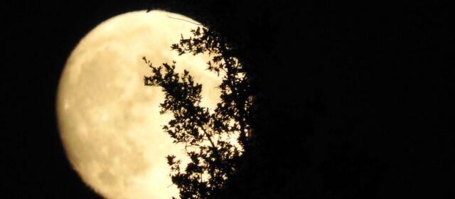 Fotos: Lluna plena, fotografiada des de Vallibona