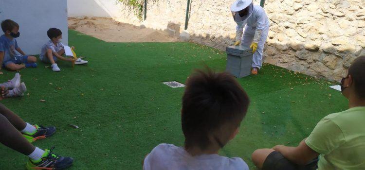 'Apiamigas' o cómo enseñar la apicultura a los escolares de Els Ports