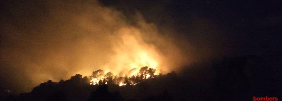Incendi forestal a Tortosa