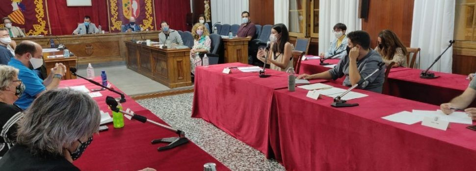L'Ajuntament de Vinaròs aprova la creació de la Taula delBenestar Animal