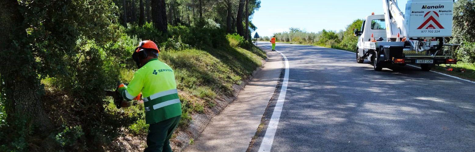 La Diputació realitza tasques de poda i tala en 108 km de la seva xarxa viària per prevenir incendis i millorar la visibilitat dels conductors