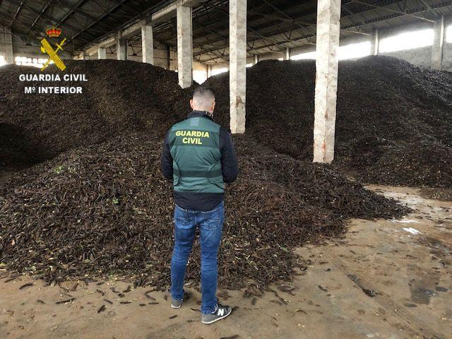 2 detenidos y 8 investigados por supuestos 17 hurtos de algarrobas en Vinaròs, Sant Rafael, Sant Jordi, Benicarló, Càlig y Cervera de varias localidades del Baix Maestrat
