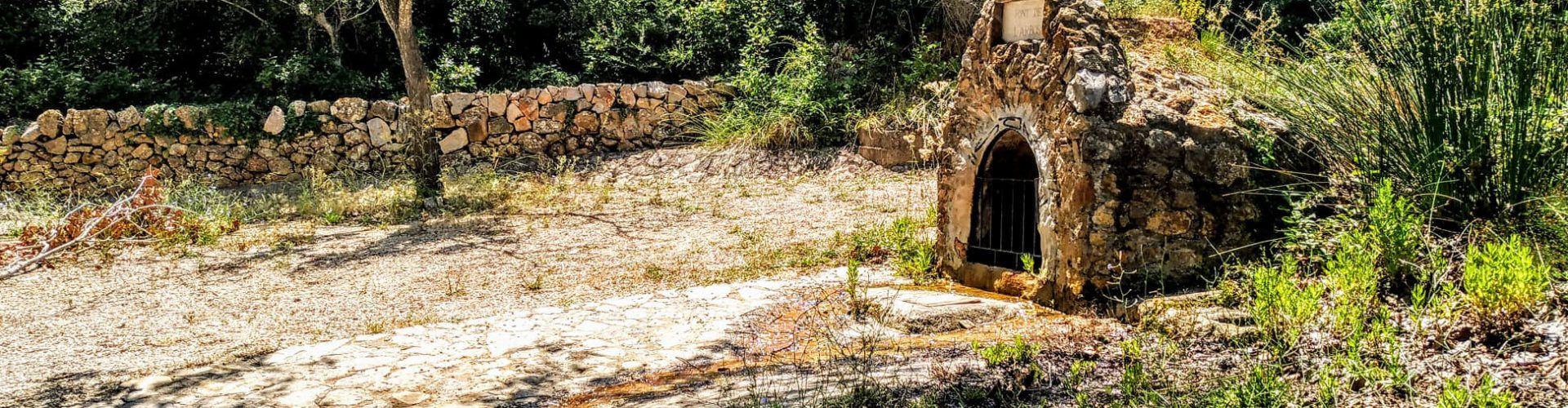 Fotos: Font de l'Arboç (Godall)