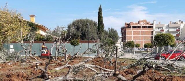 Benicarlótransformarà una parcel·la de 3.000 metres quadrats en un gran parc verd