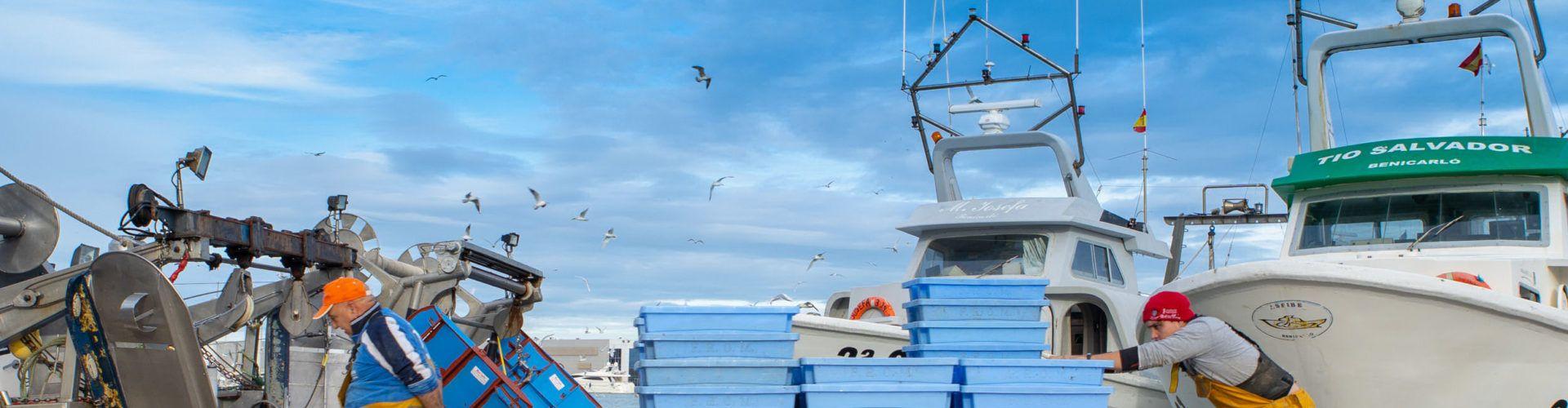 Benicarló demana ajudes europees per a promocionar el sector pesquer