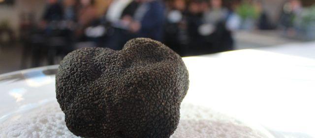 Culla estrena un mercado dominical de trufa negra y productos locales