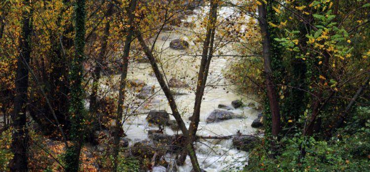 Xifres de rècord de pluja anual a Vallibona