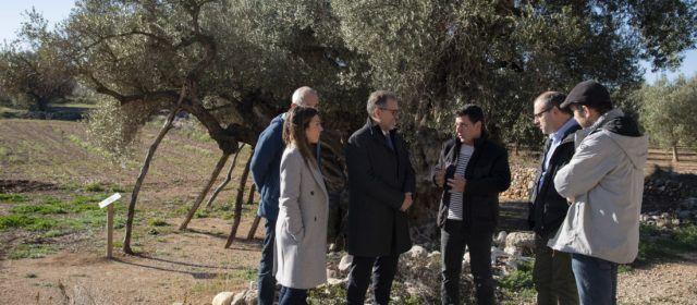 La Diputació destina més de 52.000 euros a la conservació i millora de 16 paratges naturals de la província
