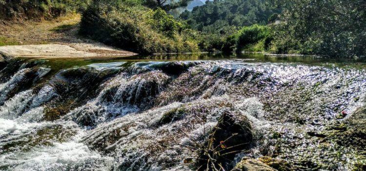Fotos: Barranc de Lloret (Mas de Barberans-Roquetes)