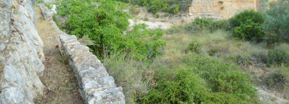 El Cervol XV