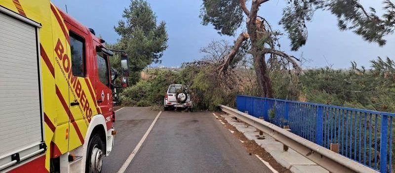 Els Bombers de la Diputació efectuen actuacions a Vinaròs, Benassal, Sorita, entre altres llocs, pel temporal de vent