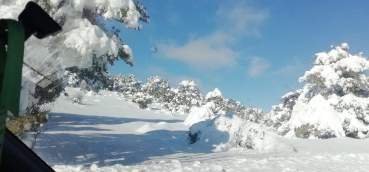 Vídeos: carretera de Vallibona, rere la gran nevada