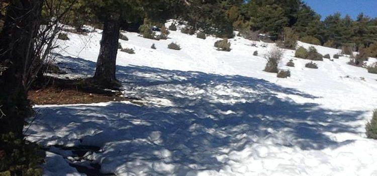 """Fotos: La neu """"aguanta"""" al """"Pla de Santa Àgueda"""" (Vallibona)"""