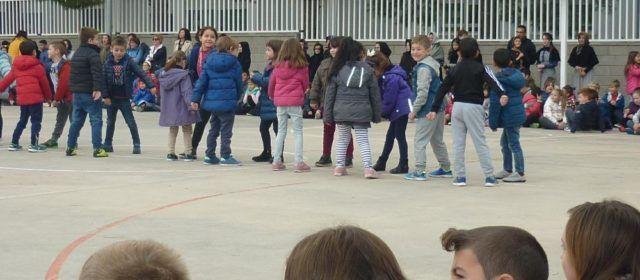 Millores a la pista poliesportiva i als patis de l'Escola Ramón y Cajal, opció escollida en els pressupostos participatius a Ulldecona