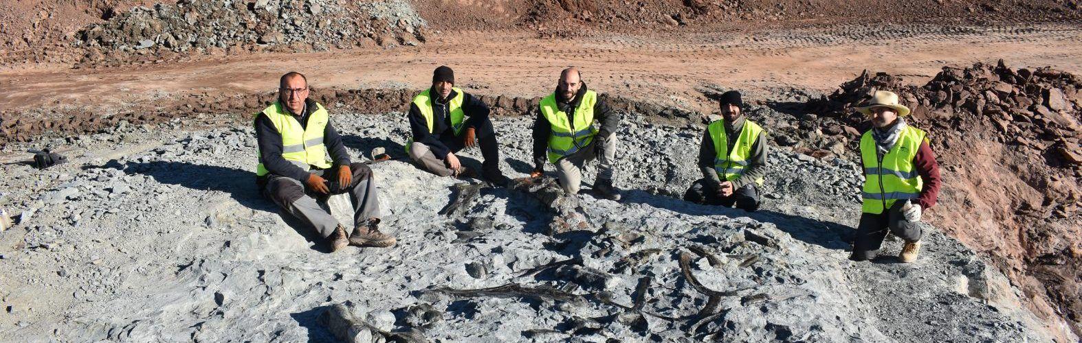 Arcillas Vega del Moll, de Morella: una gran mina para la cerámica y la paleontología