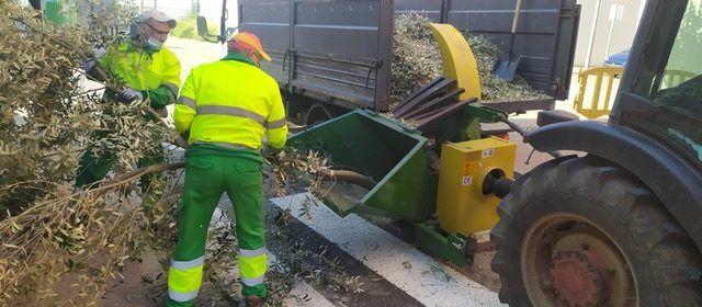 Vinaròs inicia proves pilot per convertir les restes de poda en adob