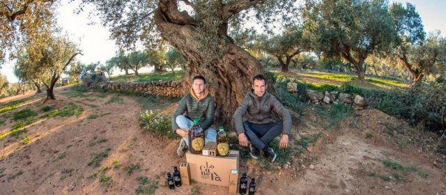 Martí Roca Ecològic, de Canet lo Roig, primer premio al mejor Aceite de Oliva Virgen Extra Ecológico de la Comunitat Valenciana