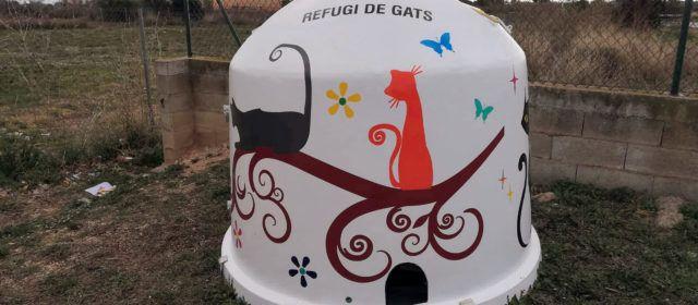 Alcanar ja té sis refugis per a gats ferals