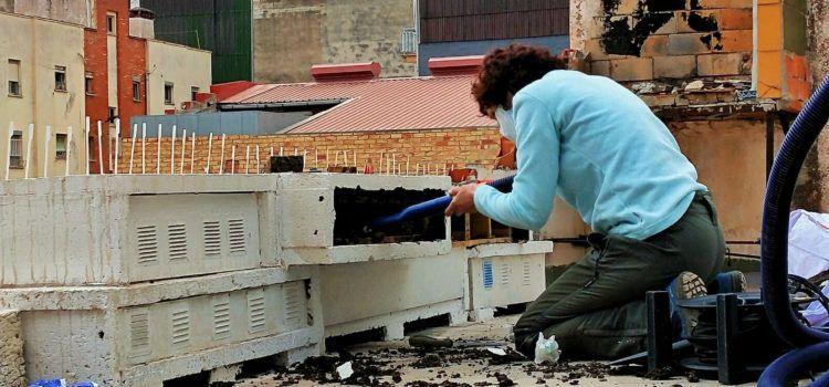Benicarló amplia les caixes niu per a protegir les falcilles i lluitar contra els insectes