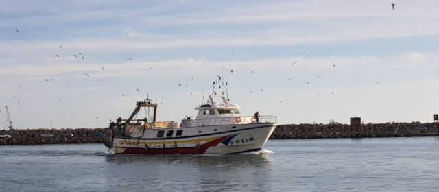 COINCOPESCA demana reprovar al Comissari de Pesca de la Unió Europea, Virginijus Sinkevicius