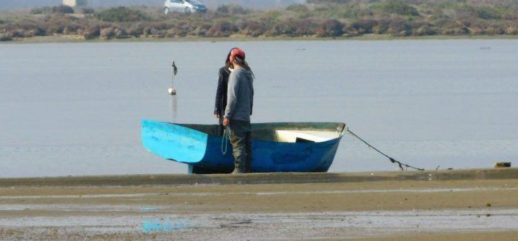 Fotos: El Delta de l'Ebre, des del mirador de Patrau
